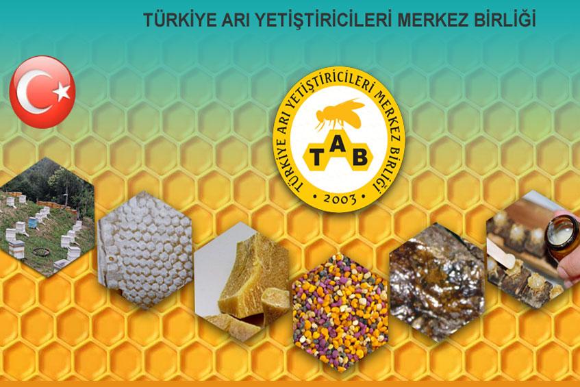 Photo of Türkiye Arı Yetiştiricileri Merkezi Web Sitesi Geliştirmesine Başlandı