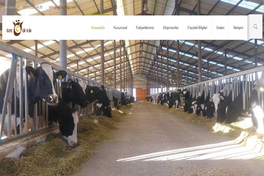 Photo of Özce Çiftliği Web Sitesi Yayına Alındı