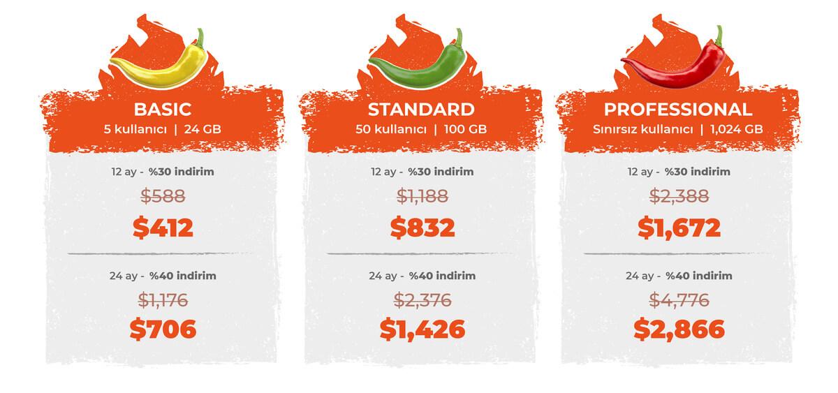 Bitrix24 Ağustos kampanyası fiyatlandırma